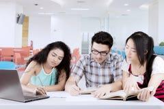 Blandras- studenter som studerar i arkiv arkivfoton