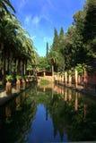 blanes de trädgårds- pinya rosa Royaltyfria Bilder
