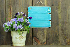 Blank antique blue sign by pot of purple flowers (pansies) Royalty Free Stock Photos