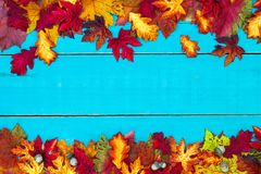 Blank autumn sign with colorful leaves border Stock Image