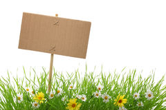Blank billboard with fresh grass and flowers Stock Photo