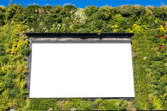 Blank billboard in a green wall Royalty Free Stock Photo