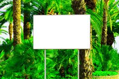 Blank billboard with a space for your information. Tropical paradise background with big green palm leaves stock photography