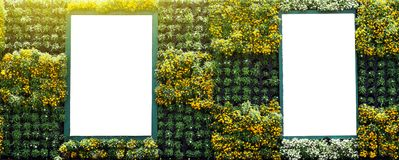 Blank billboard in vertical tropical garden Royalty Free Stock Image