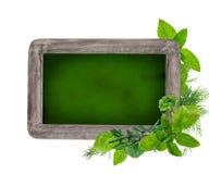 Blank blackboard, daily menu Royalty Free Stock Image