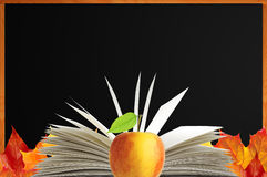 Blank blackboard, openned book and autumn maple leaves Stock Images