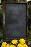Blank blackboard for quick message Stock Images