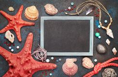Blank blackboard with sea shells, rope and star fish on dark bac Royalty Free Stock Photos