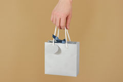 Blank blue paper gift bag with hearts mock up holding in hand. E Royalty Free Stock Image