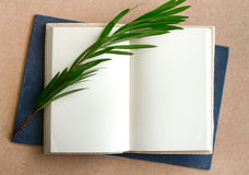 Blank book  open. With grass Stock Images