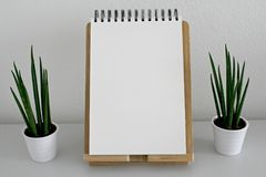 Blank, Book, Pages Stock Image
