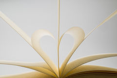 Blank Book Pages Forming a Heart On White Background Stock Photography