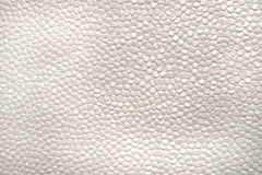Blank bubble paper with texture Stock Images