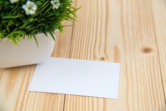 Blank business cards and little decorative tree in white vase on wooden working table with copy space for add text ID. and logo,. Business company concept idea royalty free stock images