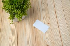 Blank business cards and little decorative tree in white vase on wooden working table with copy space for add text ID. and logo,. Business company concept idea royalty free stock photography