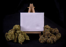Blank canvas with dried cannabis buds stock photography