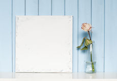 A blank canvas and white rose in the bottle Royalty Free Stock Images