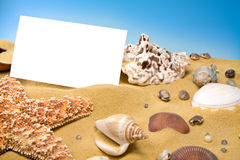 Blank Card on Beach Stock Images