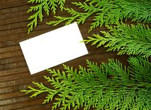Blank card and branch of fir- tree on wooden Stock Images