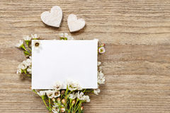 Blank card among chamelaucium flowers (waxflower) Royalty Free Stock Photo