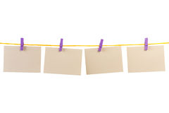 Blank card  clothesline Stock Image