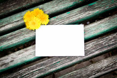 Blank card with dandelion Royalty Free Stock Photo
