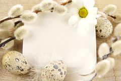 Blank card easter greetings wooden plank,eggs,catkins,feather Royalty Free Stock Image