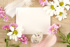 Blank card for easter greetings on wooden plank with eggs,flowers Stock Photos