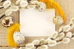 Blank card for easter greetings on wooden plank with eggs Royalty Free Stock Image