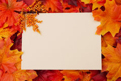 Blank card with fall leaves for your Royalty Free Stock Photo