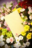 Blank card and flowers stock photography