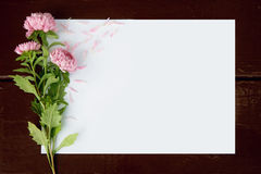 Blank card with flowers aster. On wooden background Stock Images