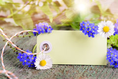 Blank card with flowers for present Stock Photos