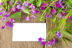 Blank card with flowers Stock Images