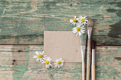 Blank card with  paintbrushes and chamomile on old grunge boards Stock Photos