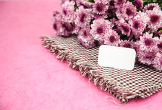 Blank card with pink flower on pink background Stock Photos