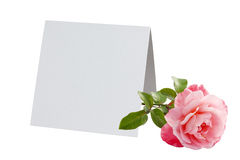 Blank card and pink rose Stock Photos
