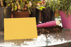 Blank card with plants Stock Photography