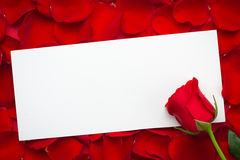 Blank card with red rose on a wooden background. Copy space. 8 march International woman day. Red rose flower and greeting card is Stock Images