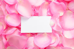 Blank card with rose petals Stock Photography