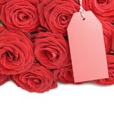 Blank card with roses Stock Photos