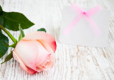 Blank card for your message and pink rose Stock Image