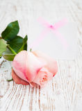 Blank card for your message and pink rose Royalty Free Stock Photo