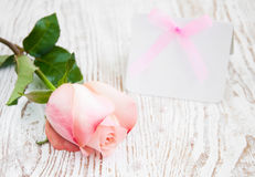 Blank card for your message and pink rose Royalty Free Stock Photos