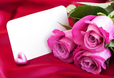Blank card for your message and pink roses Royalty Free Stock Photography