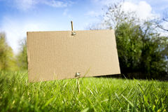 Blank cardboard sign in nature ready for message Royalty Free Stock Photo