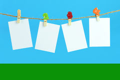 Blank cards Royalty Free Stock Photos