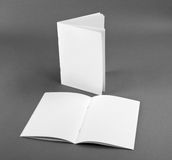 Blank catalog, brochure, magazines, book mock up. Blank opened magazine on grey background stock image