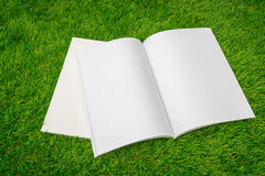 Blank catalog, magazines,book mock up on green grass. Royalty Free Stock Images