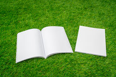 Blank catalog, magazines,book mock up on green grass. Stock Image